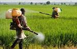 پاورپوینت آفت کش ها و کنترل شیمیایی آفات