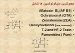 پاورپوینت اهمیت و کاربرد مایکوتوکسین بایندر در صنعت دامپروری