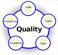 مدیریت کیفیت در سازمانهای مجازی